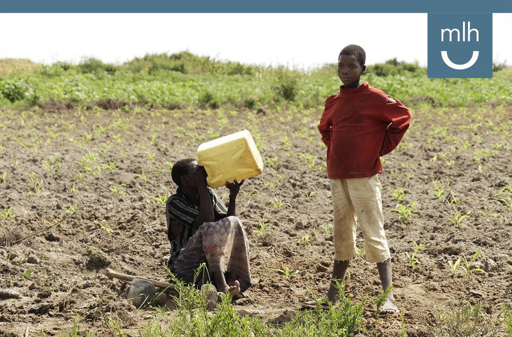 Construcción de una granja para el orfanato Mupenzi